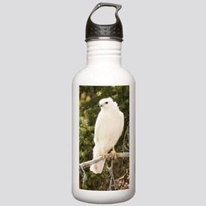 White red tail hawk Water Bottle