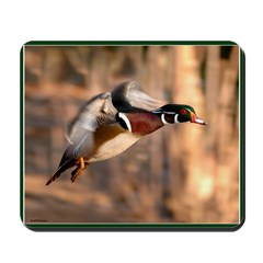 Wood Duck Mousepad