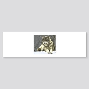 Gray Wolf Bumper Sticker