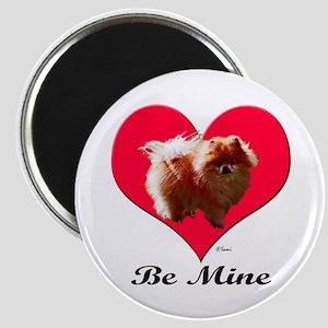 A Pomeranian Valentine Magnet