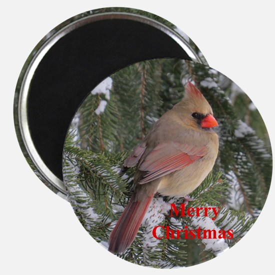 Female Cardinal Magnets