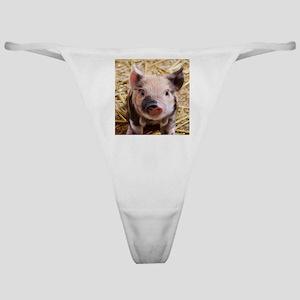 sweet piglet Classic Thong