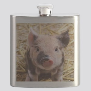 sweet piglet Flask