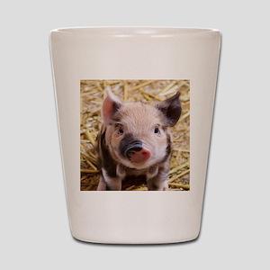 sweet piglet Shot Glass
