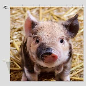 sweet piglet Shower Curtain