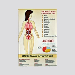Cigarette Smoking Infographic Rectangle Magnet