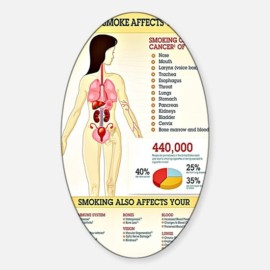 Cigarette Smoking Infographic Sticker (Oval)