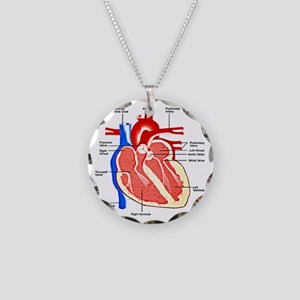 Heart Diagram Necklace Circle Charm