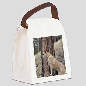 Red Heeler Ready  Canvas Lunch Bag