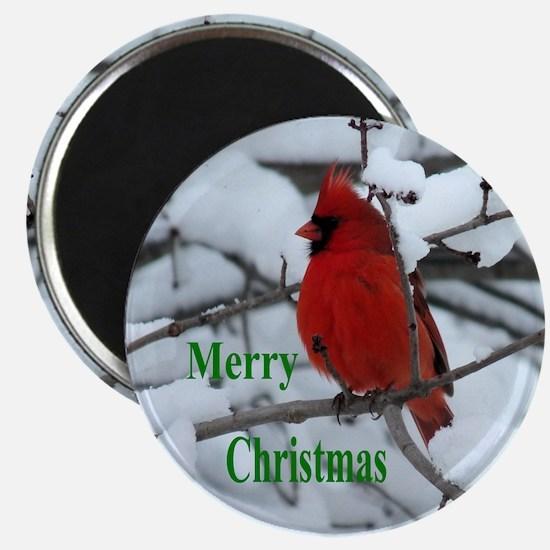 Snow Cardinal Magnets