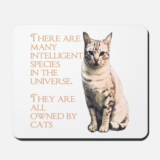 cats and intelligence Mousepad