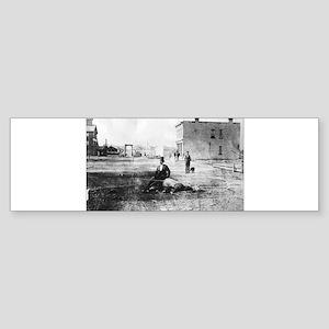 Sheboygan Dead Horse Bumper Sticker
