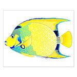 Queen Angelfish Posters