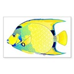 Queen Angelfish Sticker