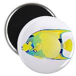 Queen Angelfish Magnets