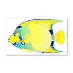 Queen Angelfish Car Magnet 20 x 12