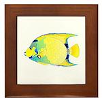 Queen Angelfish Framed Tile