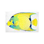 Queen Angelfish 3'x5' Area Rug