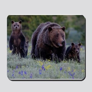 MAMMA GRIZZLY and 3 CUBS Mousepad