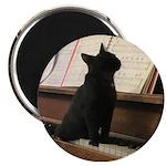 Piano Kitty Magnets