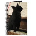 Piano Kitty Journal