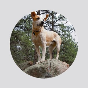 Red Heeler on Rock Ornament (Round)