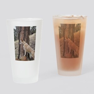 Red Heeler Ready Drinking Glass
