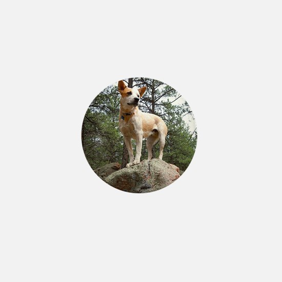 Red Heeler in Mountains Mini Button