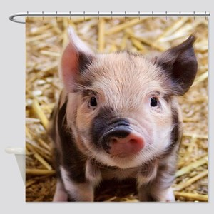 sweet piglet Shower Curtain