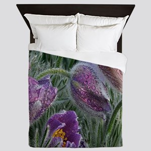 Purple Crocus Flowers Queen Duvet
