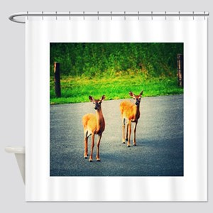 Two Watchful Deer in the Smoky Mountains Shower Cu