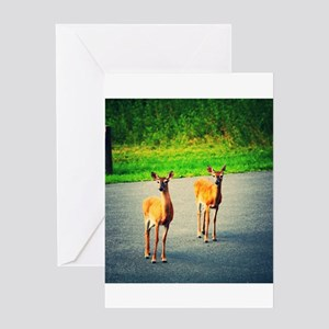 Two Watchful Deer in the Smoky Mountains Greeting