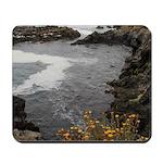 Seal Rock Coastal Scene Mousepad