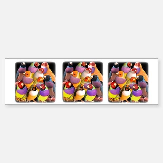 Gouldian Finch Bumper Bumper Bumper Sticker