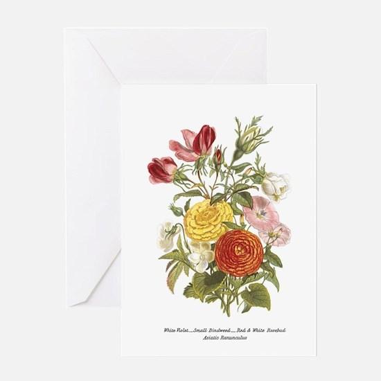 Violet, Rosebuds and Ranunculus Greeting Cards