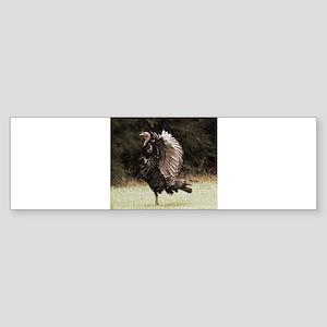 Wild Turkey Wingspan Bumper Sticker