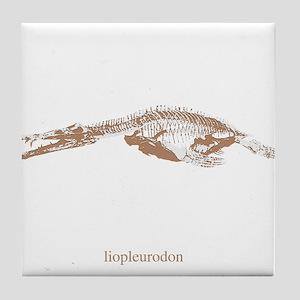 liopleurodon skeleton Tile Coaster