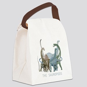 3-sauropods Canvas Lunch Bag