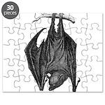 Bat Puzzle