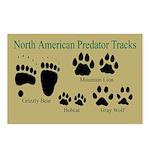 Predator Tracks Postcards (Package of 8)