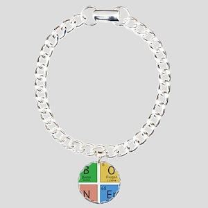 Chemistry Boner Charm Bracelet, One Charm