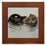 California Sea Otter Framed Tile