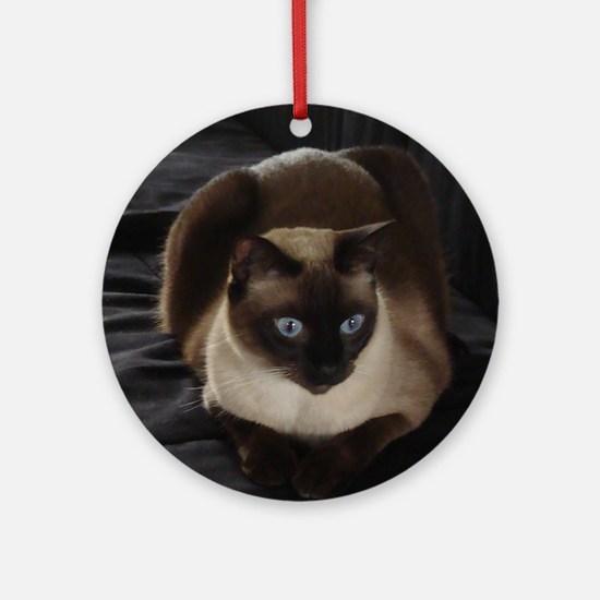 Lulú, the Siamese Cat Round Ornament