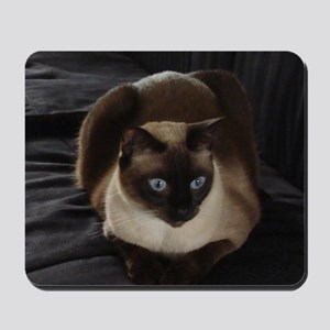 Lulú, the Siamese Cat Mousepad