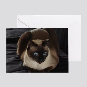 Lulú, the Siamese Cat Greeting Card