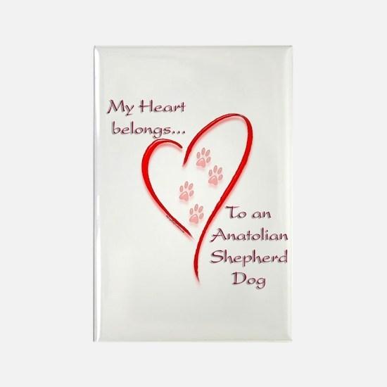 Anatolian Heart Belongs Rectangle Magnet