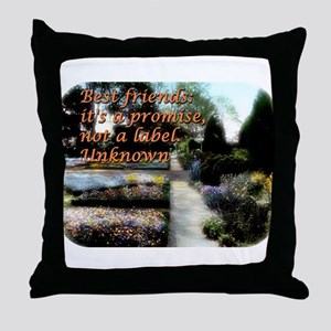 Best Friends Its A Promise - Unknown Throw Pillow