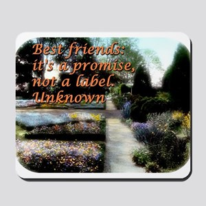 Best Friends Its A Promise - Unknown Mousepad