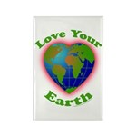 Love Your Earth Heart Rectangle Magnet (100 pack)