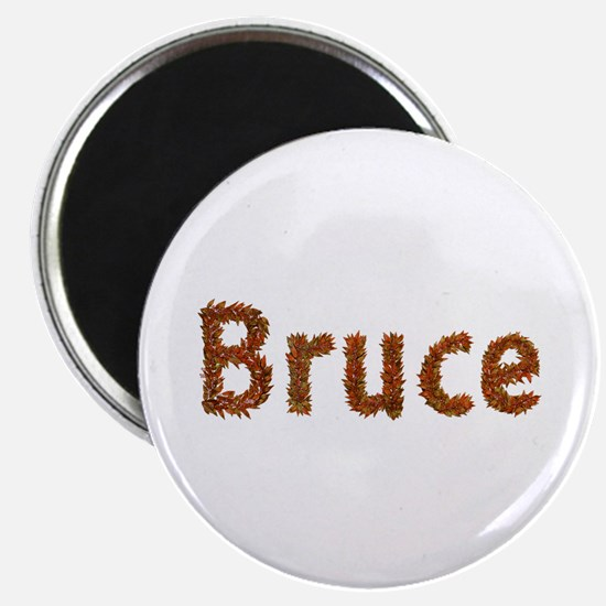 Bruce Fall Leaves Round Magnet 10 Pack